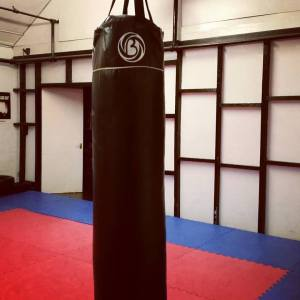 UFS heavy bag